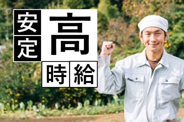 京都郡苅田町【派】寮空きあり|高時給1500円|自動車製造|出張面接随時 イメージ