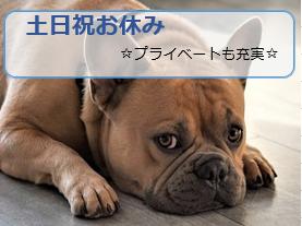 ≪神戸市北区/ピッキング≫【派遣】ピッキング・検品、出荷に関わるお仕事♪二か月短期のお仕事です! イメージ